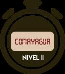 ICON-COMAYAGUA-N2