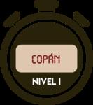 ICON-COPAN-N1